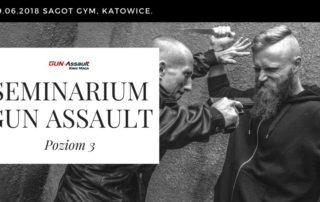 seminarium krav maga gun assault