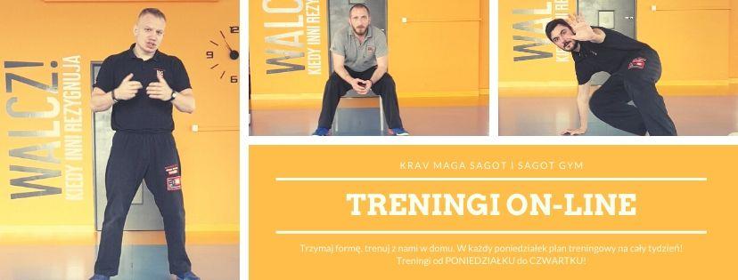 Treningi Krav Maga – ON-LINE